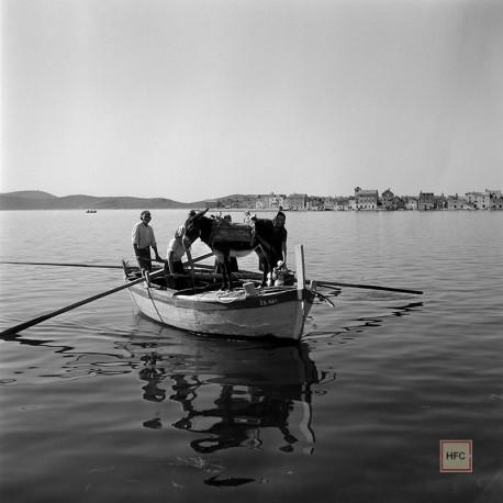 Milan Pavic, KRAPANJ 014, 1955-59