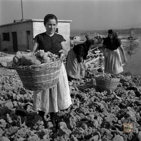 Milan Pavic, KRAPANJ 034, 1955-59